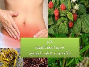علاج الأورام الليفية بالأعشاب طرق علاج اورم الرحم الليفية