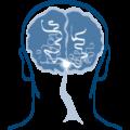 قسطرة المخ